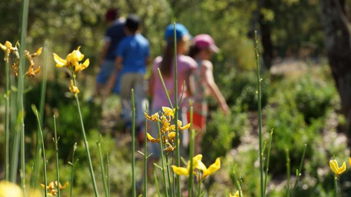 Les enfants au coeur de la nature du Château (photo PNRL - Stéphane Legal)