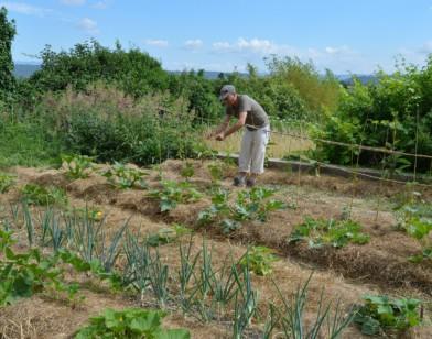 Et si l'on jardinait sans polluer ?