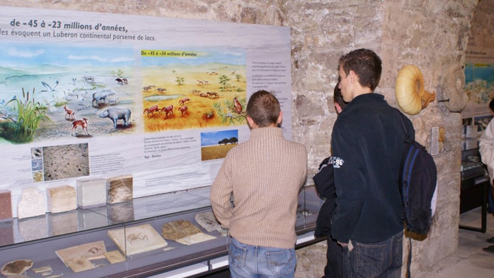 Musée de géologie à la Maison du Parc (photo PNRL - Stéphane Legal)