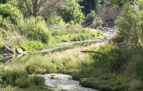 Téléchargements Natura 2000