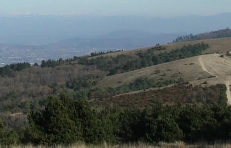 La crête du Luberon, emblématique du territoire - photo PNRL
