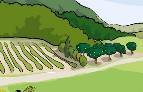 Bandeau Ressources éducatives thématique Biodiversité (La Vache Noire)