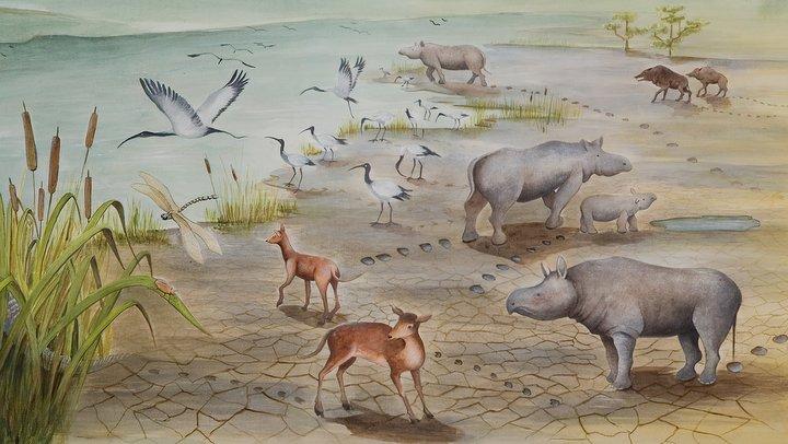 Représentation de la dalle de Viens, il y a 30 millions d'années (dessin Aline Laage)