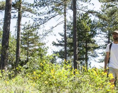 Pendant l'été, je suis prudent en forêt !