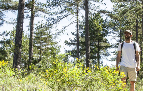 Randonneur dans la forêt de Pélissier (photo David Tatin)