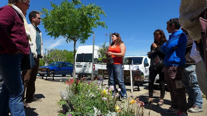 Conseils sur les plantes méditerranéennes adaptées © PNRL - Marjorie Grimaldi