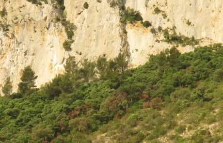 Entrée sud de la combe de Lourmarin (photo Stéphane Legal)