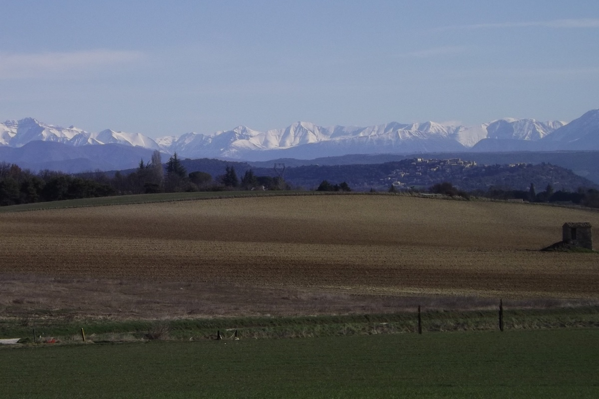 Forcalquier, Pays de Forcalquier Montagne de Lure © PNRL - Françoise Boulet