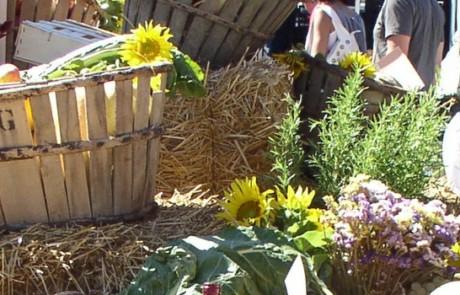 Forum agricole et alimentaire Luberon © Hervé Vincent