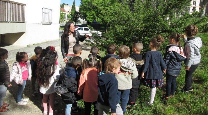 Manger Luberon, c'est bon pour la santé Photo : école St Lazare à Manosque