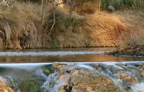 La rivière Calavon-Coulon - Photo Robert Caracchioli