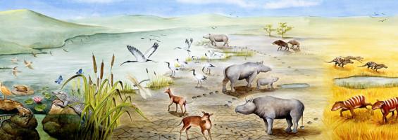 Paleopaysage du Paléogène Dessin Aline Laage