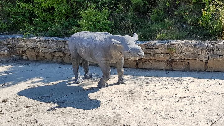 Reconstitution d'un Ronzothérium, rhinocéros auteur possible des empreintes à trois doigts (photo PNRL/Stéphane Legal)